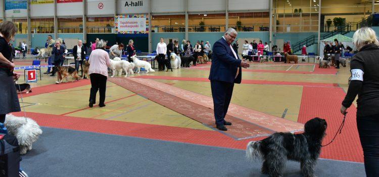 Seinäjoen kansainvälinen koiranäyttely